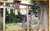 スポット4 上諏訪神社(かみすわじんじゃ)